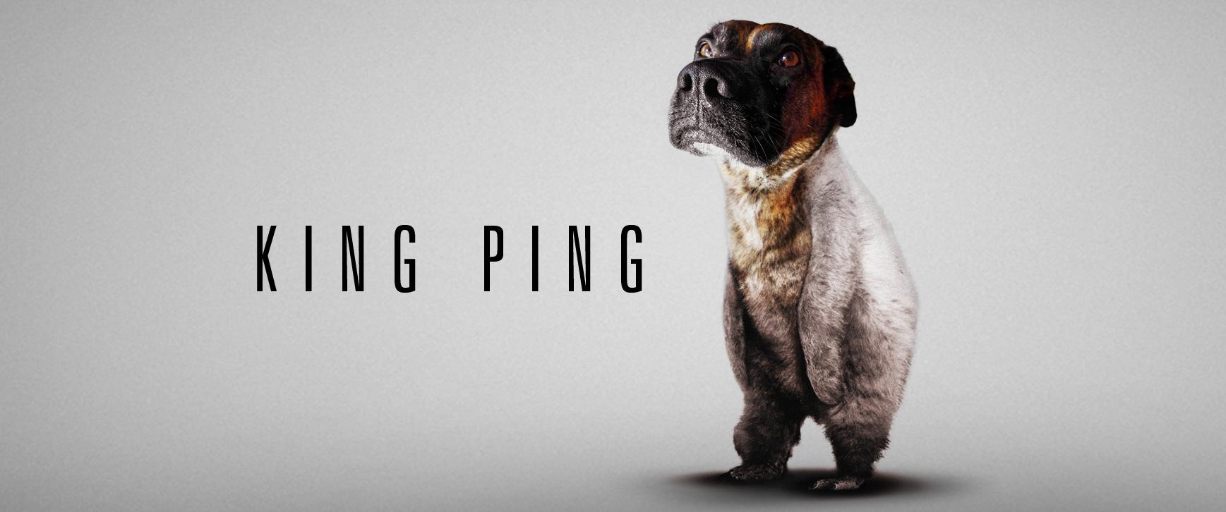King Ping Shirts